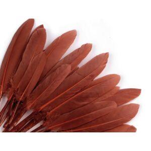 Dísz kacsa toll hossza 9-14 cm - barna