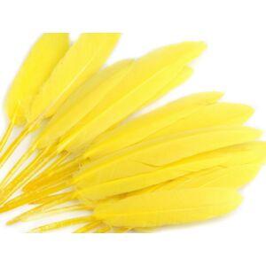 Dísz kacsa toll hossza 9-14 cm - sárga