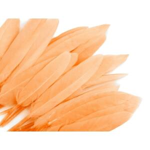Dísz kacsa toll hossza 9-14 cm - lazac