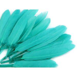 Dísz kacsa toll hossza 9-14 cm - világos türkisz