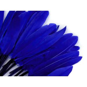 Dísz kacsa toll hossza 9-14 cm - királykék
