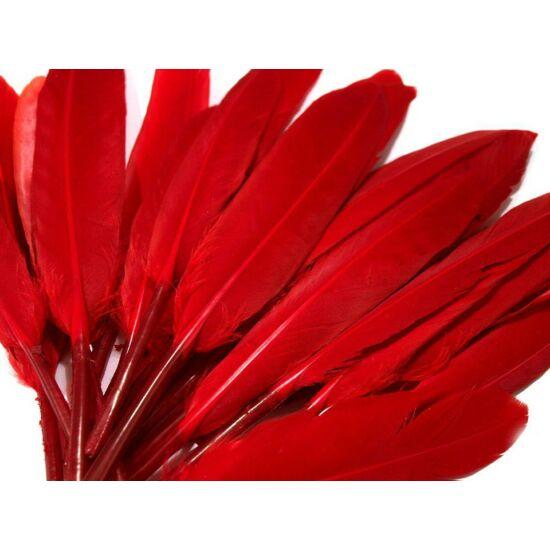 Dísz kacsa toll hossza 9-14 cm - piros