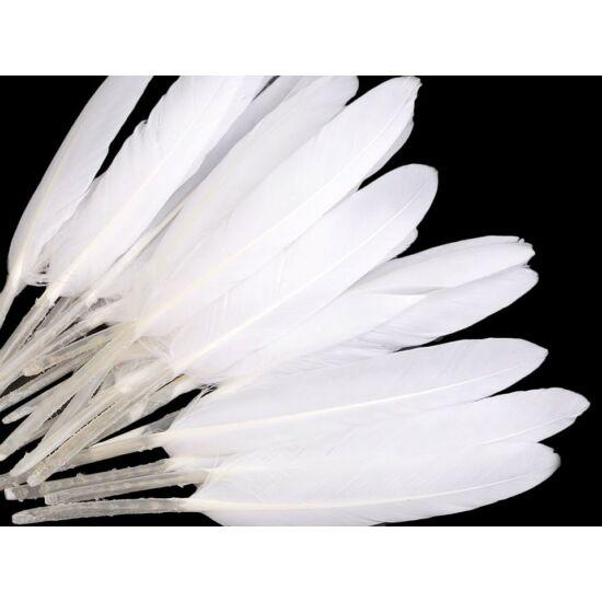 Dísz kacsa toll hossza 9-14 cm - fehér